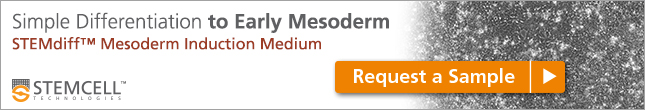 Request a sample for simple differentiation with STEMdiff™ Mesoderm Induction Medium